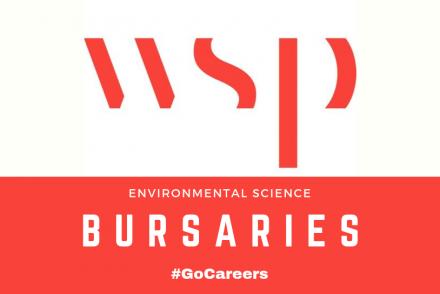 WSP Environmental Science Bursary Programme