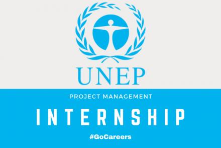 United Nations SA Project Management Internship