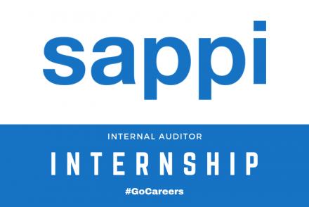 Sappi SA Internal Auditor Internship