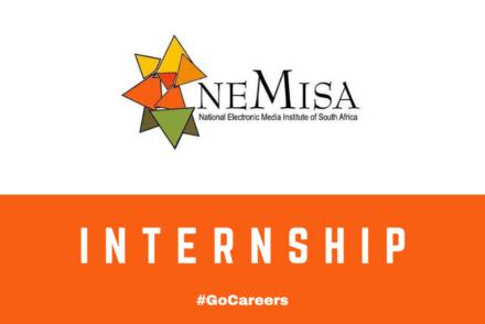 NEMISA Internship Programmes